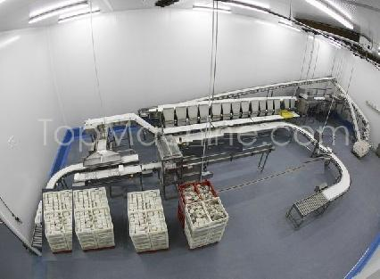 Used MAREL VISION 12 Food Packing, Weighers, Sorters