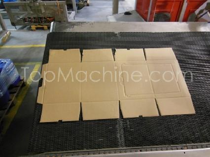 Used Ocme Altair-N60 Beverages & Liquids Case Traypacker